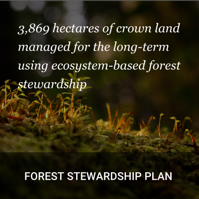 Forest Stewardship Plan